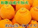 【ふるさと納税】【春柑橘の代表格】和歌山の不知火(デコポン)...