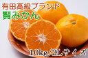 【ふるさと納税】有田ブランド「賢みかん」たっぷり10kg(2...