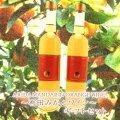 【ふるさと納税】有田みかんワイン2本セット