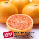 【ふるさと納税】特別栽培 有田みかん4kg【発送時期指定OK...