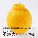 【ふるさと納税】特別栽培 不知火(デコポン)7kg  【発送...