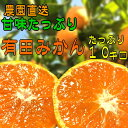 【ふるさと納税】甘味たっぷり有田みかん 10kg