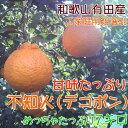 【ふるさと納税】不知火(デコポン)7kg【お届け指定日不可】