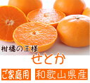 【ふるさと納税】柑橘の王様 和歌山有田の濃厚せとか(ご家庭用...