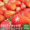 【ふるさと納税】【和歌山ブランド苺】【大人気】農家直送!完熟...