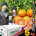 【ふるさと納税】【まごころ手選別】和歌山の有田みかん 5kg...