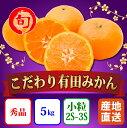 【ふるさと納税】【こだわり】有田みかん 5kg(小粒2S?3Sサイズ指定) 旬の味覚市場