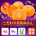 【ふるさと納税】【こだわり】有田みかん たっぷり約9kg(大玉3Lサイズ指定) 旬の味覚市場