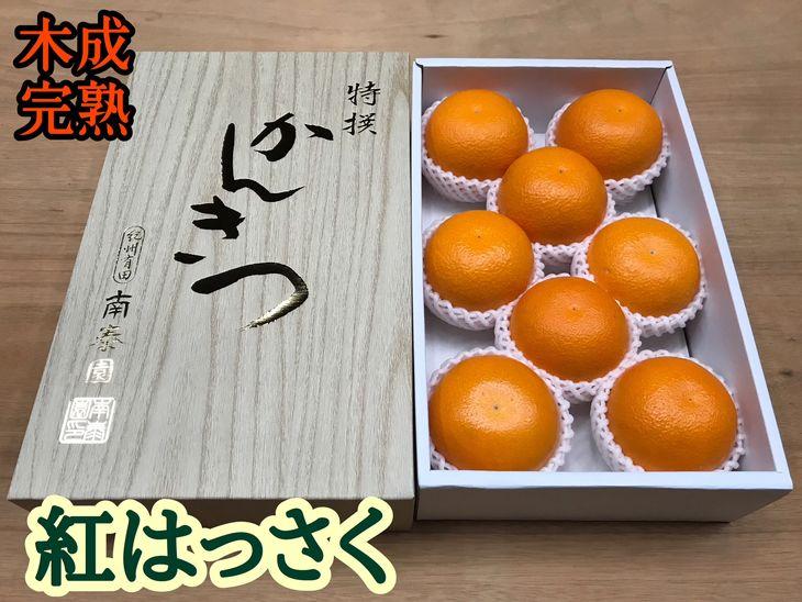 フルーツ・果物, みかん LM89 2020420205