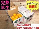 《手さげ箱》ちょっと傷【完熟早生・有田みかん】SSサイズ25個入×4箱