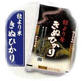 【ふるさと納税】2017年産粒より米きぬひかり10kg