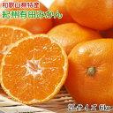 【ふるさと納税】[厳選]紀州有田みかん6kg(2Lサイズ・赤