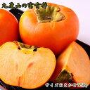【ふるさと納税】☆先行予約☆[柿の名産地]九度山の富有柿約7.5kgサイズおまかせ【2021年10月下旬より発送開始】