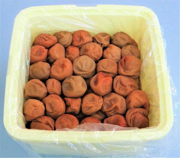 ふるさと納税 わけあり紀州南高梅はちみつ漬梅干2.6kg