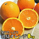 【ふるさと納税】果汁たっぷり!清見オレンジ 約8kg 有機質肥料100% ※2021年3月上旬より順次発送予定(お届け日指定不可)