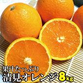 【ふるさと納税】果汁たっぷり!清見オレンジ約8kg有機質肥料100%※2021年3月上旬より順次発送予定(お届け日指定不可)