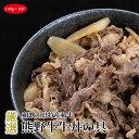【ふるさと納税】熊野牛 牛丼の具 10Pセット 1