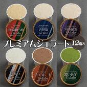 【ふるさと納税】プレミアムジェラート詰め合わせセット(6種類×2個)アイスクリームセット100mlカップゆあさジェラートラボラトリー