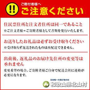 【ふるさと納税】【予約販売/9月中旬より発送】和歌山県瀧の巨峰2.2kg