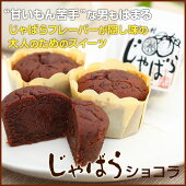 【ふるさと納税】★じゃばらショコラ48g×8個入(2箱)