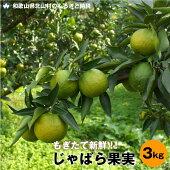 【ふるさと納税】【期間限定・予約商品】じゃばら果実(3キロ)
