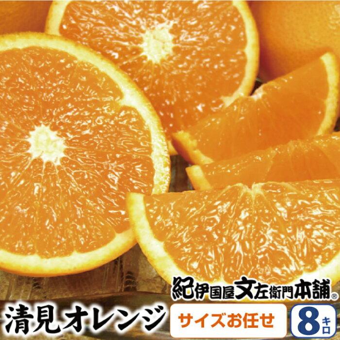 【ふるさと納税】清見オレンジ 約8kg(果実サイズおまかせ) 紀伊国屋文左衛門本舗【2021年2月中旬〜4月下旬発送予定】