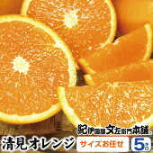 【ふるさと納税】清見オレンジサイズお任せ【5キロ】