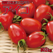 【ふるさと納税】和歌山産ミニトマト「アイコトマト」約2kg(S・Mサイズおまかせ)