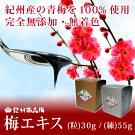 【ポイント10倍】【ふるさと納税】紀州南高梅梅エキス(練)55g