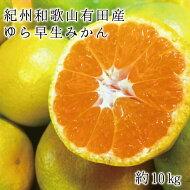 【ふるさと納税】紀州和歌山有田産ゆら早生みかん10kg