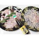 【ふるさと納税】くえ刺身&鍋、湯浅ゆずポン酢セット