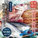【ふるさと納税】おざきのひもの 詰め合わせセット<旬の魚をお