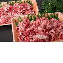 【ふるさと納税】【肉質日本一!】鳥取和牛 切り落とし