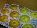 【ふるさと納税】016 「二十世紀」と「豊水」の食べ比べセット(3キロ) 鳥取 梨 フルーツ 果物 ジューシー 梨 なし ナシ 送料無料 期間限定