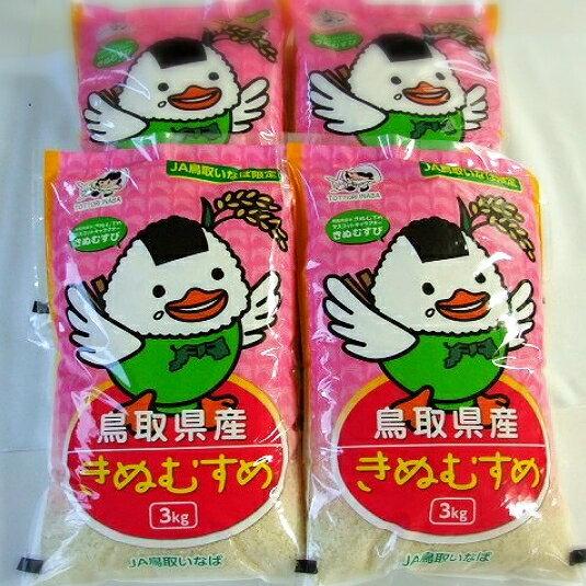 鳥取県産 きぬむすめ 12kg