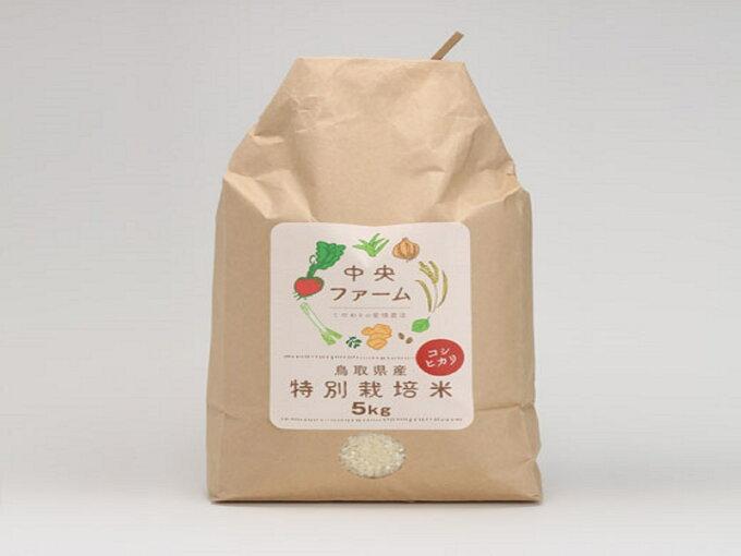 【ふるさと納税】307 鳥取県産特別栽培米こしひかり(5kg)...