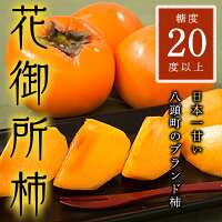 Y013_八頭町特産花御所柿
