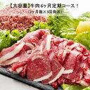 【ふるさと納税】Y007【乳質日本一!】鳥取県産牛大容量6ヶ...