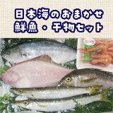 【ふるさと納税】日本海のおまかせ鮮魚・干物セット