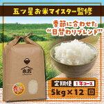 【ふるさと納税】【定期便】5kg×12回(1年)