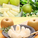 【ふるさと納税】二十世紀梨と旬の赤梨セット 5kg ※8月下...