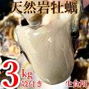 【ふるさと納税】天然岩ガキ 3Kg(殻付き)岩がき 牡蠣※2...