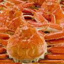 【ふるさと納税】ご自宅用日本海獲れたて蒸し松葉ガニ 中〜中大3枚※11月〜翌年2月のお届けとなります