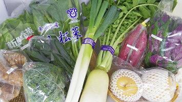 【ふるさと納税】1.大山町産季節の野菜セット