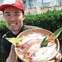 【ふるさと納税】10.幻の高級魚「のどぐろ(鮮魚)」
