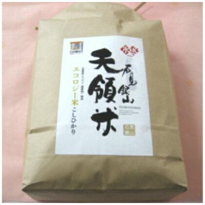 米 コシヒカリ A032 石見銀山天領米(氷感熟成エコロジー米こしひかり)(平成29年産) 5kg
