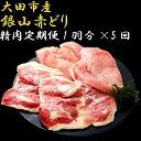 【ふるさと納税】 肉 鶏 定期 鶏肉 地鶏 国産 島根県産 ...