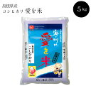 【ふるさと納税】 BG無洗米 コシヒカリ 5kg 米 無洗米...