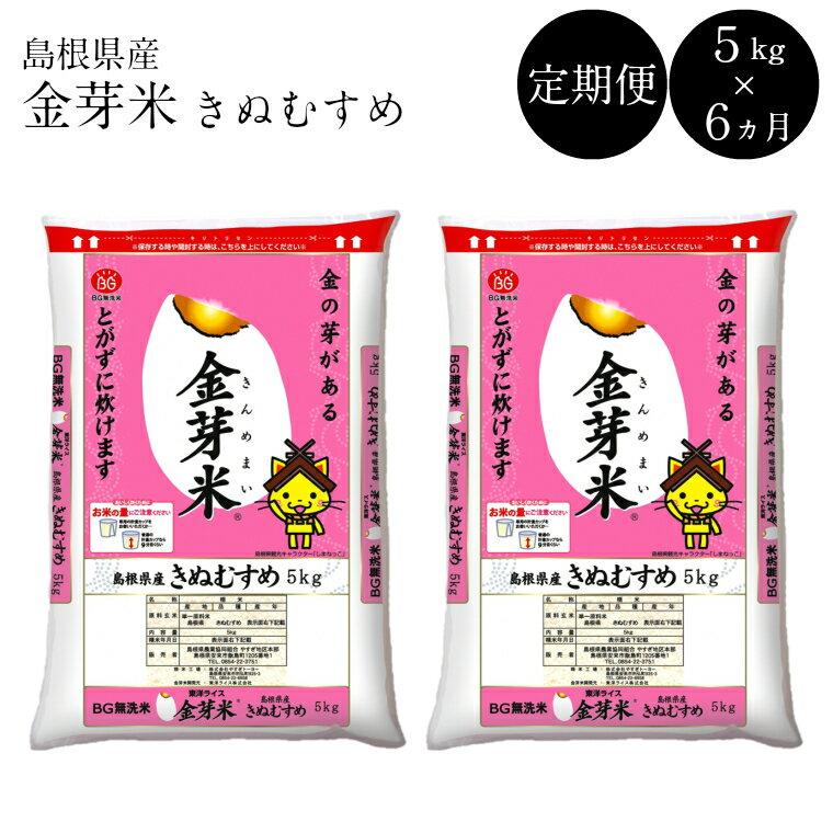 無洗米 金芽米 定期 きぬむすめ 5kg×6 30kg