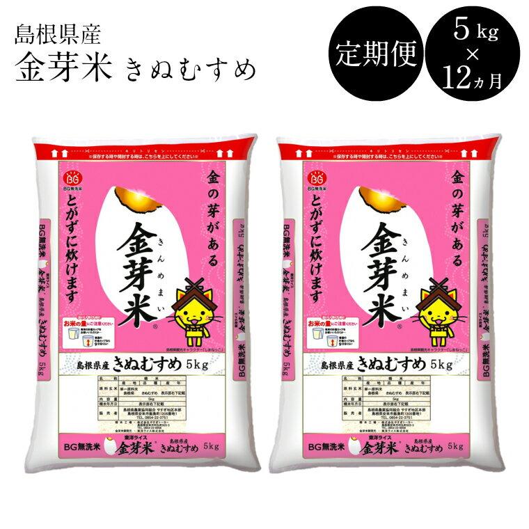 無洗米 金芽米 定期 きぬむすめ 5kg×12 60㎏